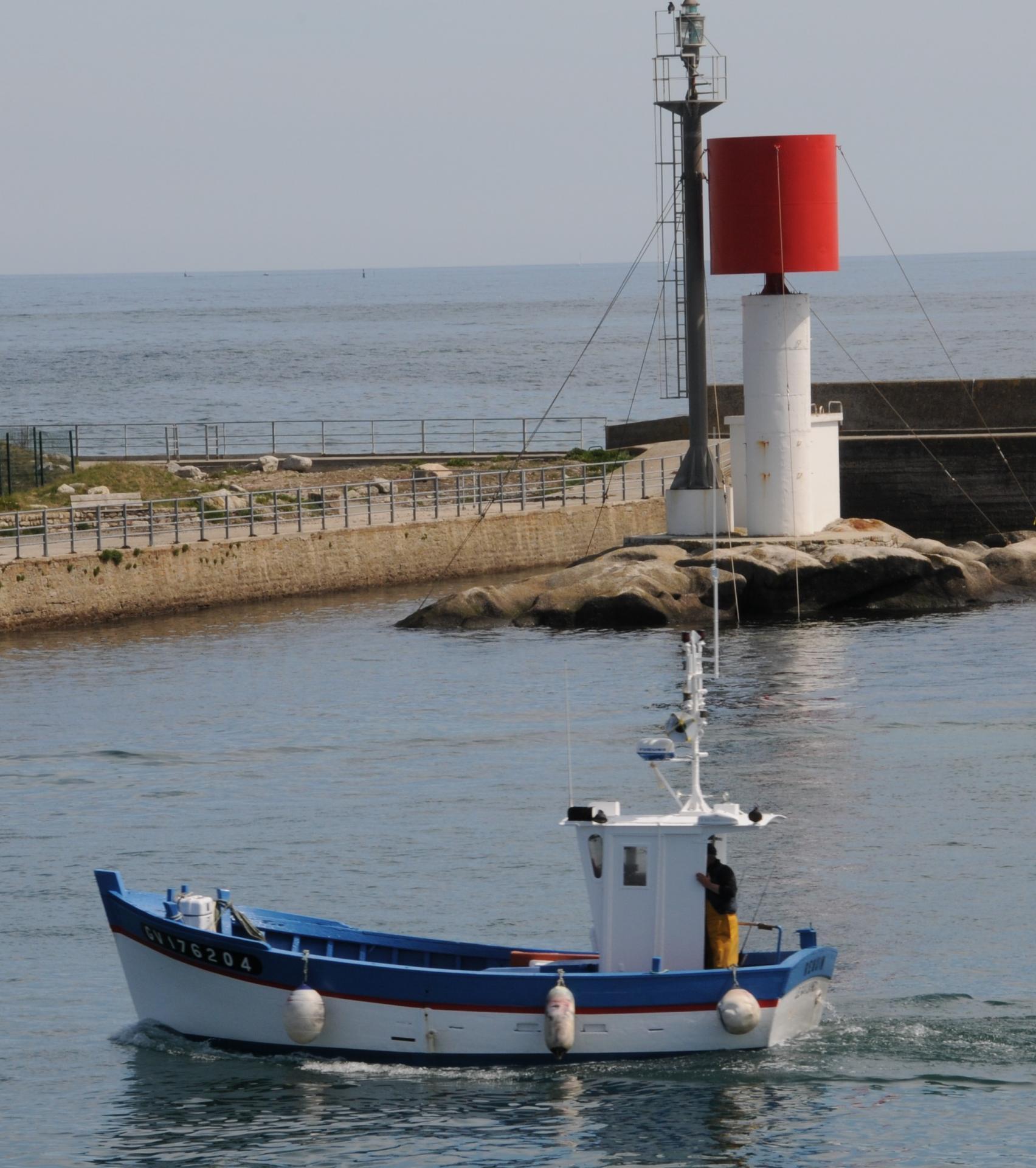 160505 requin gv en navigation georges rault 2