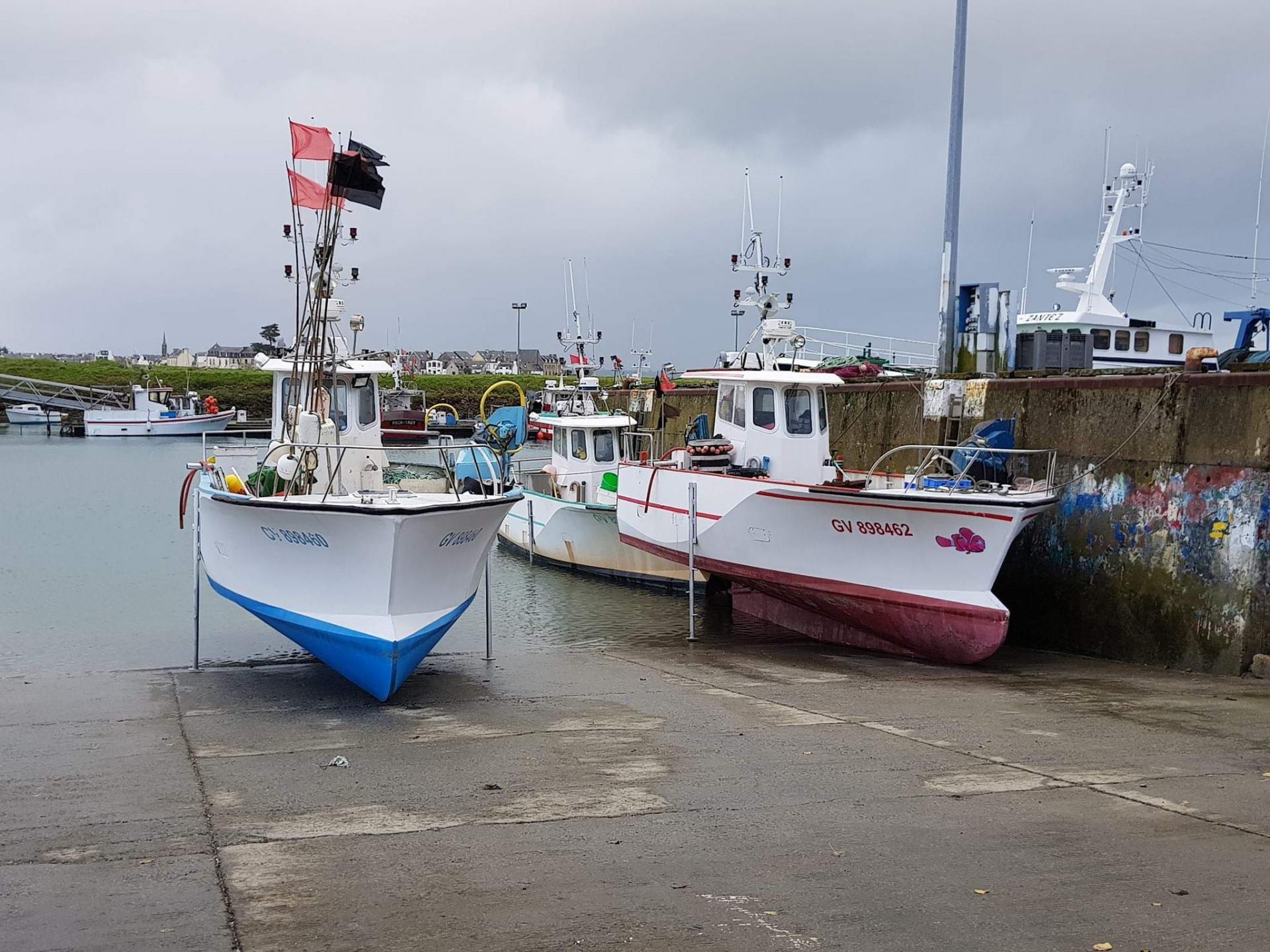 Loctudy pesca 8